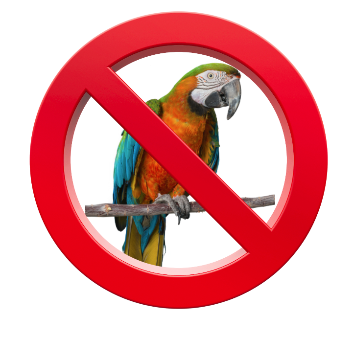 a parrot in a road sign with a no line through it. No parrot.
